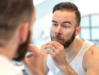 Lông mũi có tác dụng gì?