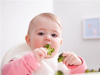Tìm hiểu thực đơn ăn dặm cho bé 7 tháng tuổi