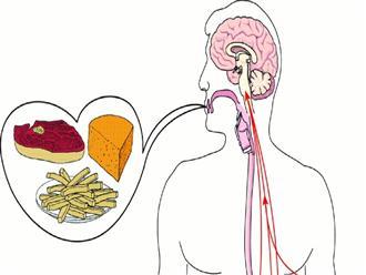 Đau dạ dày không nên ăn gì để nhanh chóng khỏi bệnh?