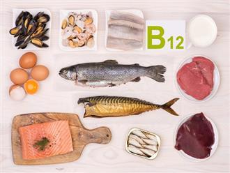 Các thực phẩm giàu vitamin B12 giúp cơ thể khỏe mạnh