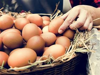 Nằm mơ thấy ổ trứng gà điềm tốt hay xấu?