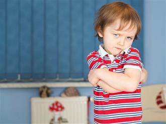 Hãy học cách dạy trẻ 1 tuổi biết nghe lời thay vì hành động theo cảm xúc!