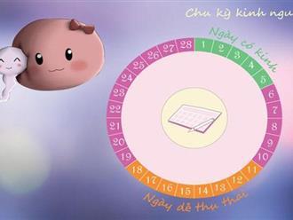 Cách tính ngày rụng trứng để mang thai các cặp vợ chồng nên biết!