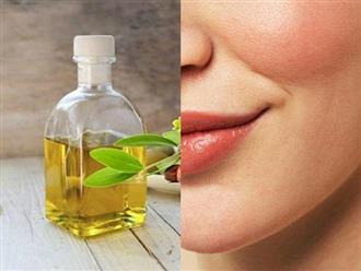 10 lý do nên thêm dầu jojoba vào thói quen chăm sóc da