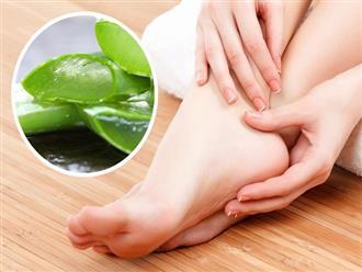 10 mẹo dưỡng da chân vừa dễ thực hiện lại hiệu quả cao, chị em hãy thử để sở hữu đôi bàn chân nuột nà