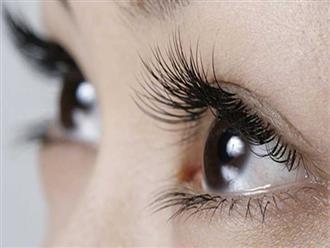 4 hỗn hợp tự nhiên giúp kích thích lông mi mọc dài hơn