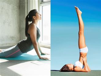 5 bài tập yoga đơn giản giúp bạn nhanh chóng sở hữu vóc dáng thon gọn, hoàn hảo để đón năm mới