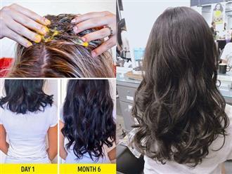 Tóc sẽ không còn khô xơ mà luôn suôn mượt, sáng bóng nhờ 3 công thức từ tự nhiên này