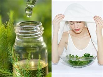 Dễ gây kích ứng nhưng làm theo cách này, tinh dầu tràm trà là phương thuốc trị mụn hiệu quả