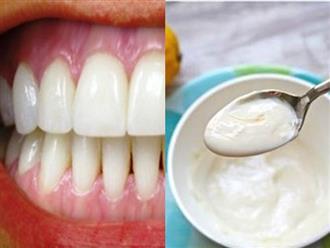 Độc chiêu hô biến răng vàng khè hóa trắng sứ, hôi miệng kinh niên cũng khỏi vĩnh viễn ngay tức thì chỉ nhờ 1 thìa sữa chua