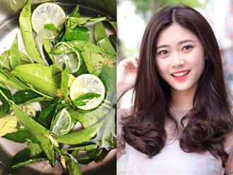 Mùa hè nắng nóng khiến da đầu sinh gàu, mẩn ngứa, tóc gãy rụng, hãy đun sôi vài lá trà xanh theo cách này để gội
