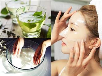 Tự làm mặt nạ giấy từ trà xanh để dùng, làn da sạm đen do cháy nắng hay nhăn nheo vì lão hóa cũng trở nên căng mịn, trắng hồng