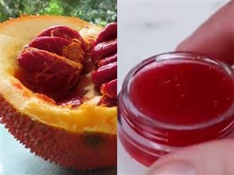 Lấy dầu gấc làm son, cả năm môi luôn ĐỎ HỒNG, CĂNG MỌNG mà chẳng lo nhiễm chì thâm môi