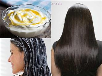 Ủ bằng hỗn hợp này thường xuyên, gàu rơi trắng áo cũng trị dứt điểm, tóc còn dài ra cả chục cm cực nhanh