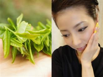 Trà xanh – 'Tiên dược' lưu giữ tuổi xuân giúp phụ nữ Nhật Bản 'trẻ mãi không già'