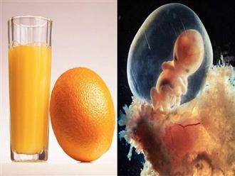 9 loại nước ép hoa quả là THẦN DƯỢC nuôi NÃO THAI NHI, dẫn NƯỚC ỐI về