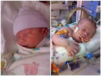 Cho con bú đều đặn sau sinh, mẹ sững sờ nhận tin con 3 ngày tuổi tử vong vì đói