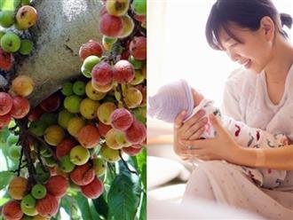 Những loại hoa quả 'vàng' tốt hơn thuốc bổ cho phụ nữ sau sinh