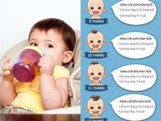 Cách phòng ngừa sâu răng cho trẻ em trong độ tuổi ăn dặm