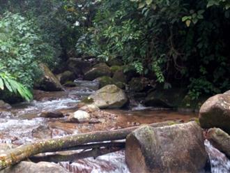 Một phượt thủ TP.HCM đột tử trên đường leo núi Pu Si Lung (Lai Châu)