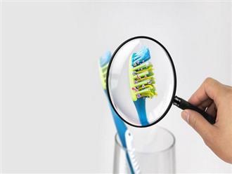 Có 100 triệu vi khuẩn trên bàn chải đánh răng của bạn, làm thế nào để bàn chải sạch sẽ?