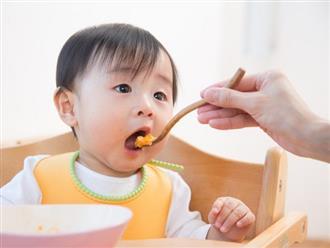 Đây là 3 lý do vì sao không nên nêm gia vị vào đồ ăn dặm cho trẻ dưới 1 tuổi