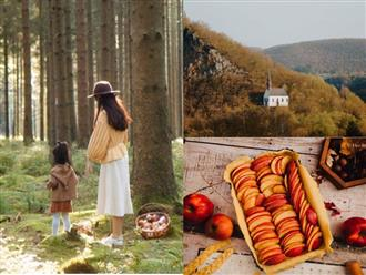 Mùa thu nước Đức bỗng rực vàng và 'đầy chất thơ' qua lăng kính 'đẹp như tranh vẽ' của hot youtuber Đào Thu Thủy