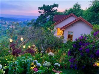 Ngôi nhà 'đẹp như cổ tích' lọt thỏm giữa rừng hoa anh đào Đà Lạt, ai nấy đều ngỡ lạc vào 'xứ sở thần tiên'