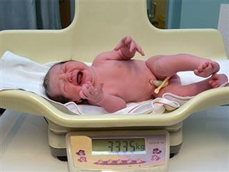Con chào đời có có 3 điểm này chứng tỏ phát triển tốt ngay từ trong bụng mẹ