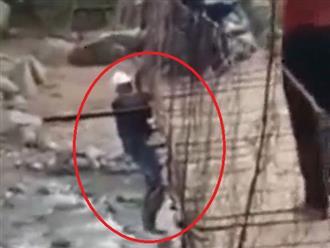 Bất chấp nguy hiểm, cố đi xe máy qua cầu treo cũ kỹ, người đàn ông treo người lơ lửng giữa cầu