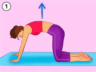 5 bài tập dễ dàng giúp bạn đốt cháy mỡ toàn cơ thể, không cần tốn tiền đến phòng gym