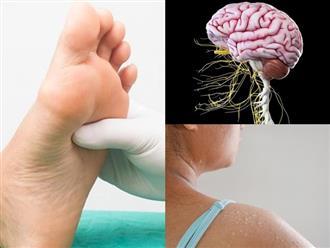 7 dấu hiệu cảnh báo các dây thần kinh trong cơ thể bạn có thể đang bị hỏng