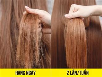 8 sai lầm khi gội đầu bạn có thể đang mắc phải khiến tóc khô xơ, nhanh bết
