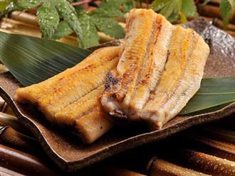 Ăn lươn tuy ngon và rất bổ nhưng nhất định không được bỏ qua những lưu ý này nếu không muốn mắc bệnh