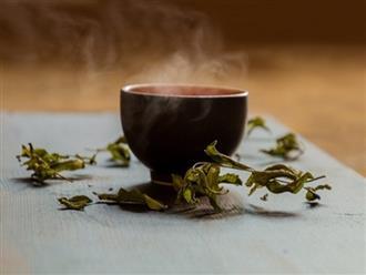 Bất ngờ với 6 loại trà có tác dụng giảm cân và giảm mỡ bụng hơn cả 1 giờ tập gym