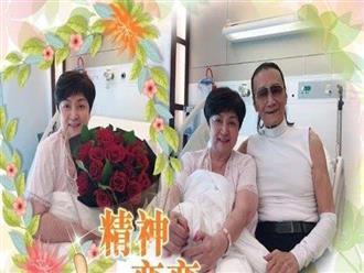 Cha Tạ Đình Phong 82 tuổi yêu lại vợ cũ sau 43 năm ly hôn