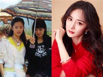 Cô gái 10 năm trước cầm ô cho Lưu Diệc Phi, giờ đây cô ấy đã thành nữ hoàng rating