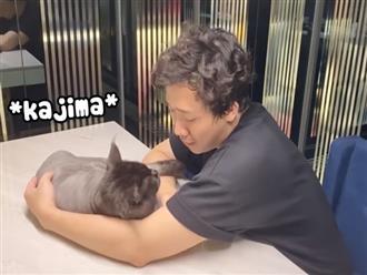 Cười ngất trước cảnh 'boss' mèo làm nũng 'sen' Trấn Thành cực yêu khiến Hari Won nổi da gà
