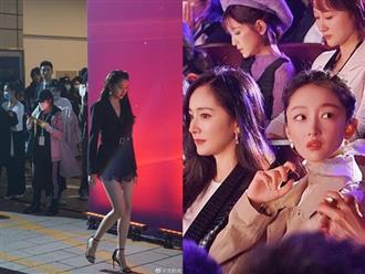 Dàn sao Cbiz đọ sắc trên thảm đỏ 'Điện ảnh Bắc Kinh': Quan Hiểu Đồng lấn lướt đàn chị, Châu Đông Vũ gây thương nhớ