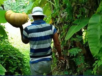 Đặt bí ngô khổng lồ dưới ao, ngày hôm sau nam thanh niên bổ đôi trái bí ra thì kinh ngạc khi thấy hiện tượng này