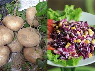 Đầu tuần eo 70, cuối tuần eo 60 nhờ công thức đơn giản từ củ đậu và rau cải