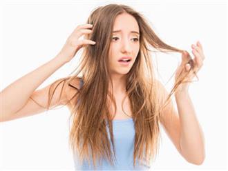 Đây là lý do bạn dù chăm sóc thế nào tóc vẫn khô và mỏng