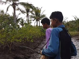 Đi dọc bờ ao, hai anh em thấy cây dừa khô bật gốc, tiến gần đến xem thì phát hiện 'kho báu' phía dưới