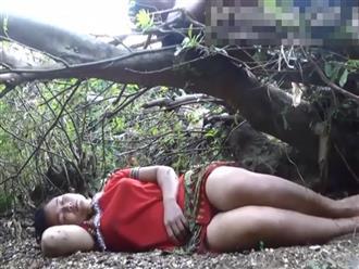 Hai vợ chồng vào rừng đốn củi rồi ngủ quên bên gốc cây, bất ngờ người đàn ông la hét thất thanh khi thấy thứ này nằm cạnh vợ