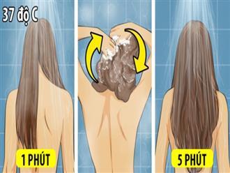Gội đầu bao lâu một lần là tốt nhất? Chuyên gia tóc hàng đầu tiết lộ đáp án chính xác