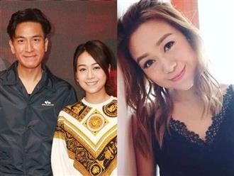 Huỳnh Tâm Dĩnh là Trần Tư Thành phiên bản nữ, níu kéo Mã Quốc Minh để cứu vãn sự nghiệp?