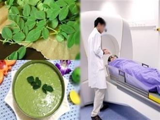 Loại rau phá hủy hơn 90% tế bào ung thư trong vòng 48h mà người Việt cứ ngỡ là rau dại mọc đầy đường