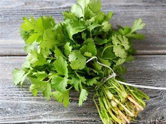 Lợi ích của loại rau rẻ như bèo, Tết nhà nào cũng có mà chưa biết tận dụng