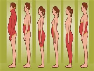 Muốn giảm béo nhanh thì phải biết áp dụng biện pháp giảm mỡ thừa theo từng loại hình cơ thể như này