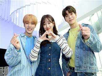 """Netizen Hàn chọn ra tổ hợp MC show âm nhạc đỉnh nhất, Irene – Park Bo Gum vẫn là """"huyền thoại"""""""